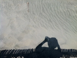 アルバムへの扉写真「中田島砂丘」このアルバムに含まれる要素:浜松、八百徳、うなぎ、中田島砂丘、浜松まつり会館、浜松城、古民家、蓮の花、蔓無し朝顔、ネコ、ねこ、モネ、ピカソ